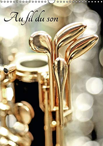 Au Fil du Son 2016: Instruments de Musique (Calvendo Art) (French Edition): Patrice Thebault