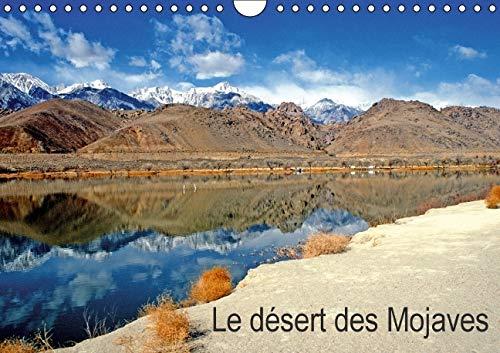 Le Desert des Mojaves 2016: Paysage du Desert des Mojaves (Calvendo Places) (French Edition): ...