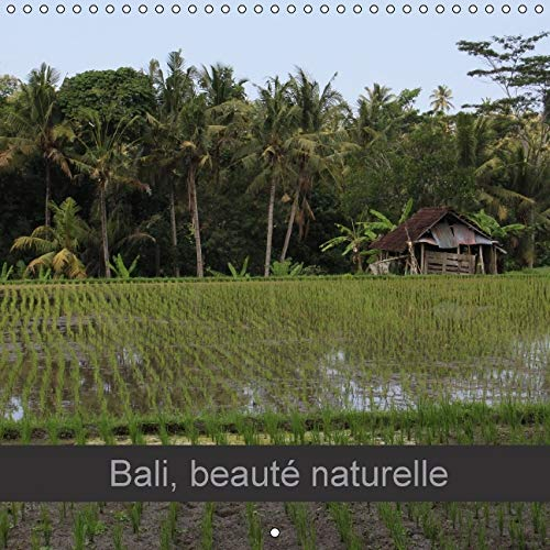 Bali, Beaute Naturelle 2016: Paysages du Bout du Monde (Calvendo Places) (French Edition): Michel ...