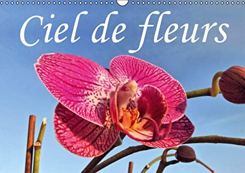 Ciel de Fleurs 2016: Beaute des Fleurs Sous un Angle Different (Calvendo Nature) (French Edition): ...