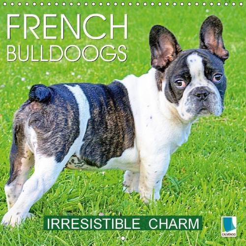 9781325142194: French Bulldogs Irresistible Charm 2017: A Breed That's Full of Character and Charisma (Calvendo Animals)