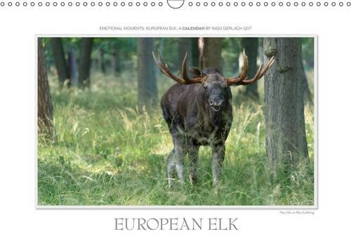 9781325144815: Emotional Moments: European Elk. UK-Version 2017: Ingo Gerlach Gdt Has Captured the European Moose in Beautiful and Funny Pictures. More at Tierphoto.De (Calvendo Animals)