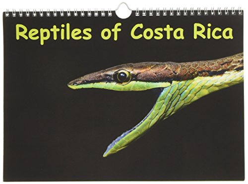 9781325149841: Reptiles of Costa Rica / UK-version (Wall Calendar 2017 DIN A4 Landscape): Snakes, lizards and turtles of Costa Rica (Monthly calendar, 14 pages ) (Calvendo Animals)