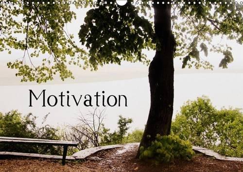9781325157167: Motivational Quotes Driamond: Dream Ambition Motivation 2017: Monthly Motivational Quotes (Calvendo Nature)