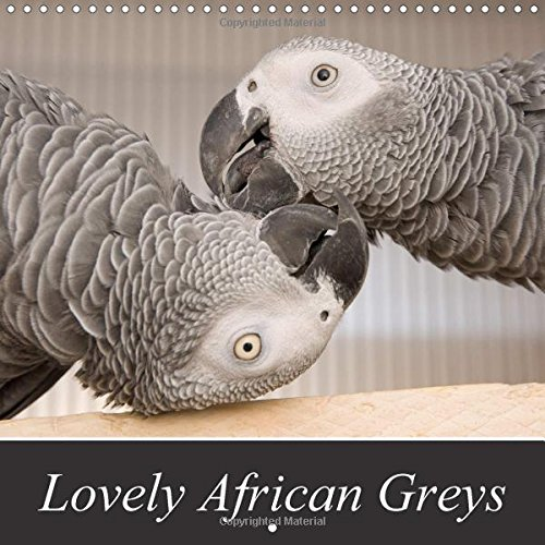 9781325159086: Lovely African Greys 2017: Unique Photos of Beautiful Grey Parrots (Calvendo Animals)