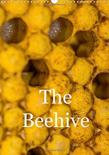 9781325191727: The Beehive 2017: The Hidden Life of Bees (Calvendo Nature)