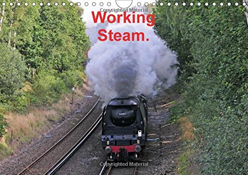 9781325198009: Working Steam. 2017: Preserved Steam Locomotives operating in Southern England. (Calvendo Technology)