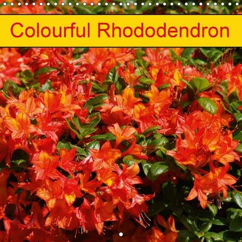 9781325206711: Colourful Rhododendron 2017: Beautiful Rhodendrons in Park and Garden (Calvendo Hobbies)