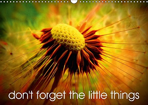 9781325249749 - Broken Toy Company: Don't forget the little things (Wall Calendar 2018 DIN A3 Landscape): Life is huge, but it's the small things that count. (Monthly calendar, 14 pages ) (Calvendo Nature) - Livre