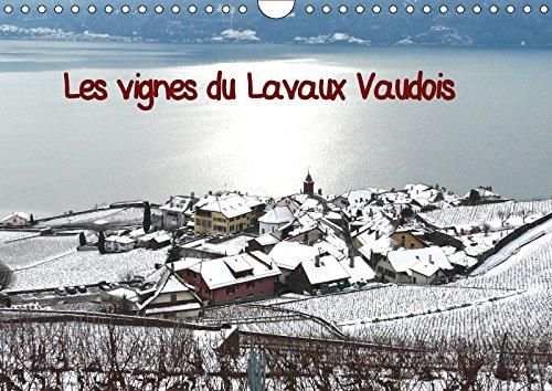 9781325264520 - Pierre-Antoine Favre: Les Vignes Du Lavaux Vaudois 2018: Vignes En Terrasses Sous La Neige - Livre