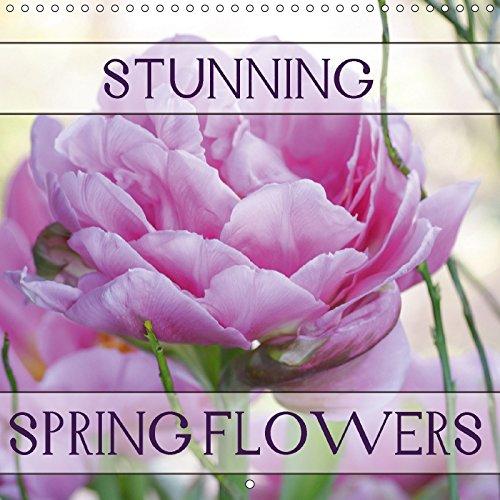 Stunning Spring Flowers (Wall Calendar 2018 300: Gisela Kruse