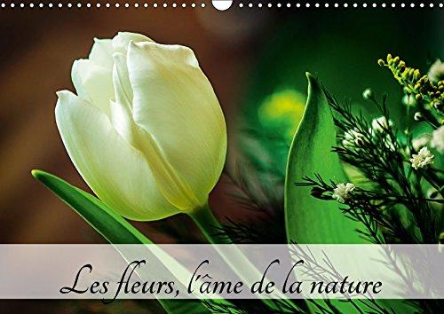 9781325268306 - Carmen Mocanu: Les Fleurs, L ame De La Nature 2018: L Ame De La Nature Est Partout Autour De Nous. Je L ai Retrouvee Aujourd hui Dans Des Fleurs! - Livre