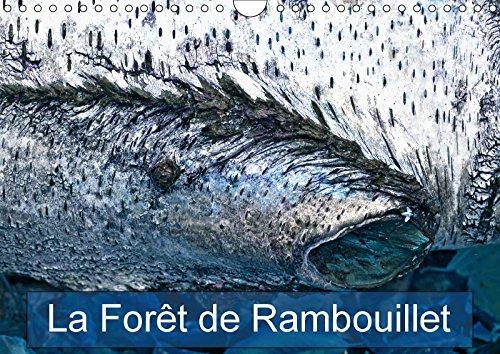 9781325283644 - N N: LA FORET DE RAMBOUILLET CALENDRIER MURAL 2018 DIN A4 HORIZONTAL - Livre