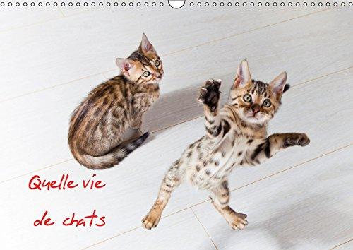 9781325283880 - Christof DARDENNE: Quelle vie de chats 2018: Chats et chatons - Livre