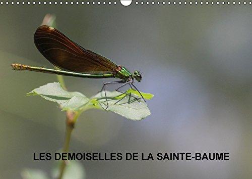 9781325294336 - JULIEN M: LES DEMOISELLES DE LA SAINTE BAUME CALENDRIER MURAL 2018 DIN A3 HORIZONTAL - Book