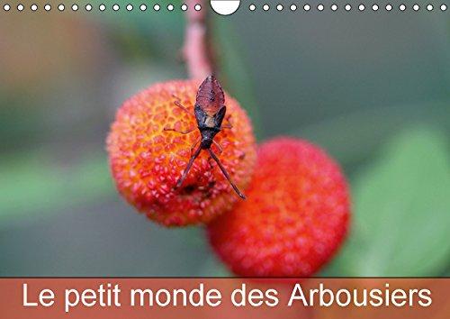 9781325296163 - Martine Julien: Le petit monde des Arbousiers 2018: Les insectes des Arbousiers - Livre