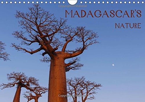 Madagascar s nature 2018: Landscapes, fauna and: Marcin Wielicki