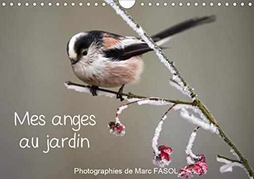 9781325485383: Mes anges au jardin 2020: Especes communes des jardins... du moins, la ou la biodiversite est reine