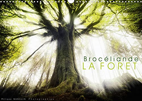 9781325659333: BROCELIANDE, la forêt (Calendrier mural 2022 DIN A3 horizontal): photographies de la forêt de Brocéliande (Calendrier mensuel, 14 Pages )