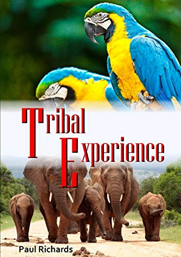 9781326513504: Tribal Experience