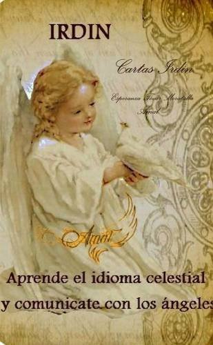 9781326588298: Cartas Irdin (Spanish Edition)