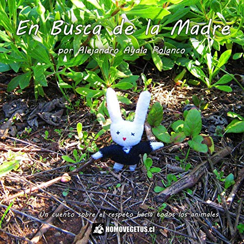 En Busca De La Madre (Paperback): Alejandro Ayala Polanco