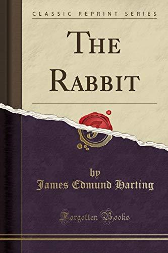 9781330303283: The Rabbit (Classic Reprint)
