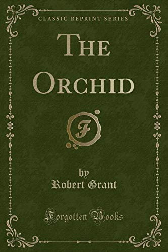 9781330676448: The Orchid (Classic Reprint)