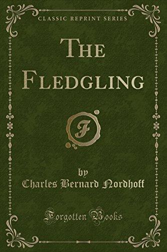 9781332730315: The Fledgling (Classic Reprint)