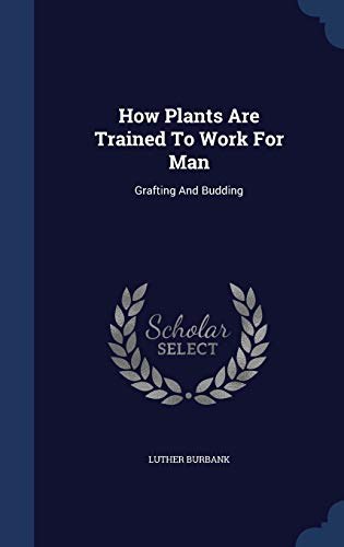 9781340119959: How Plants Are Trained to Work for Man: Grafting and Budding