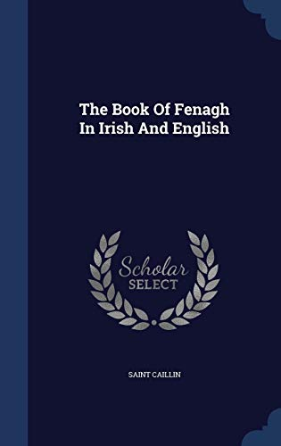 9781340120917: The Book of Fenagh in Irish and English