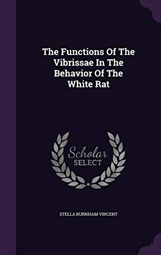 9781347821329: The Functions Of The Vibrissae In The Behavior Of The White Rat