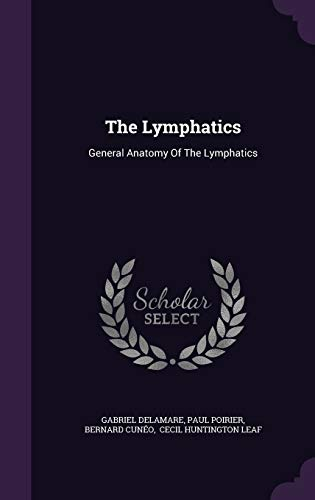 9781348125921: The Lymphatics: General Anatomy Of The Lymphatics