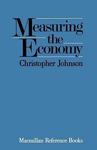9781349106325: Measuring the Economy