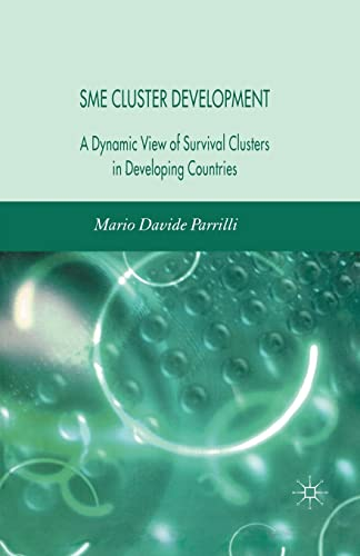 9781349283606: SME Cluster Development: A Dynamic View of Survival Clusters in Developing Countries