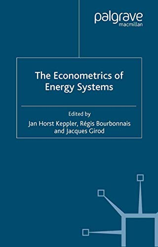 9781349541492: The Econometrics of Energy Systems