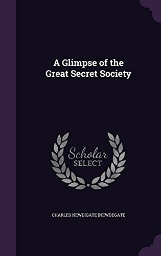 9781355968986: A Glimpse of the Great Secret Society