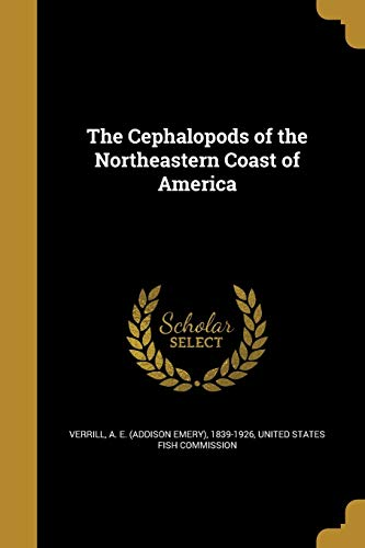 9781361460351: The Cephalopods of the Northeastern Coast of America