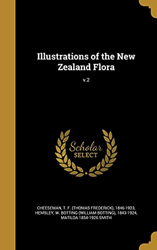 Illustrations of the New Zealand Flora; V.2: Smith, Matilda 1854-1926