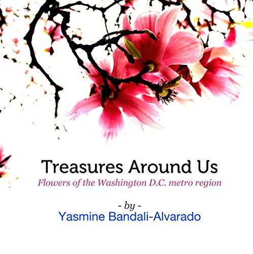 9781367465732: Treasures Around Us