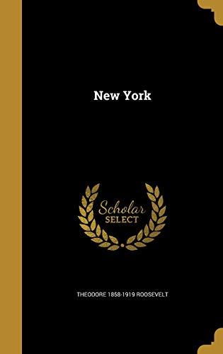 9781372911408: New York