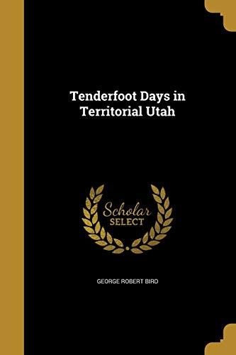 9781373712592: Tenderfoot Days in Territorial Utah