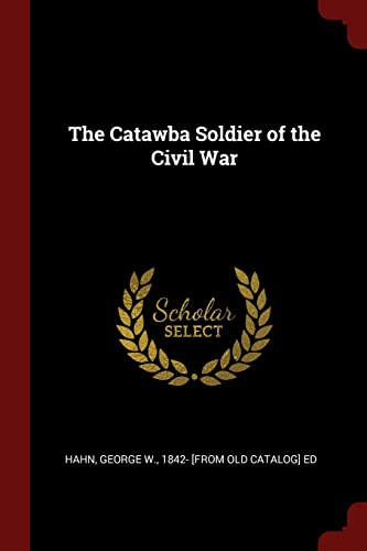 9781375865234: The Catawba Soldier of the Civil War