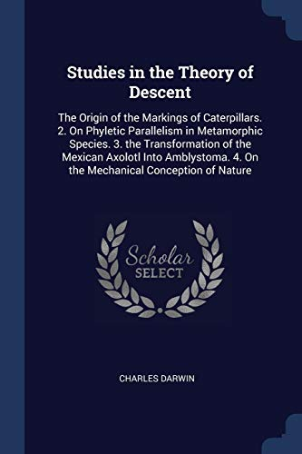 9781376616002: Studies in the Theory of Descent: The Origin of the Markings of Caterpillars. 2. On Phyletic Parallelism in Metamorphic Species. 3. the Transformation ... 4. On the Mechanical Conception of Nature