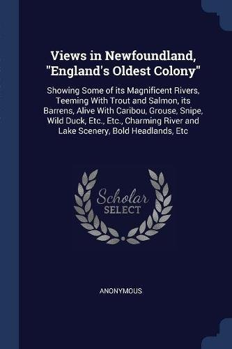 Views in Newfoundland, England's Oldest Colony: Showing: Anonymous