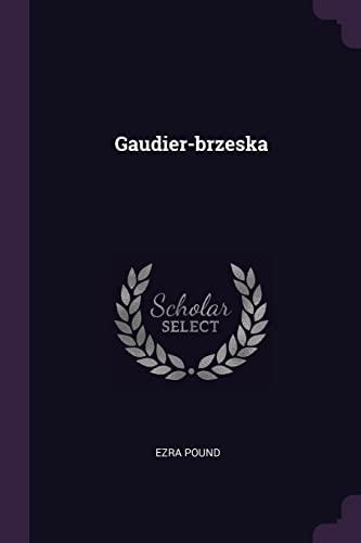9781378380697: Gaudier-brzeska