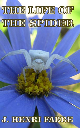 9781389509612: The Life of the Spider