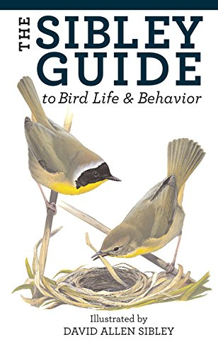 9781400043866: The Sibley Guide to Bird Life and Behavior