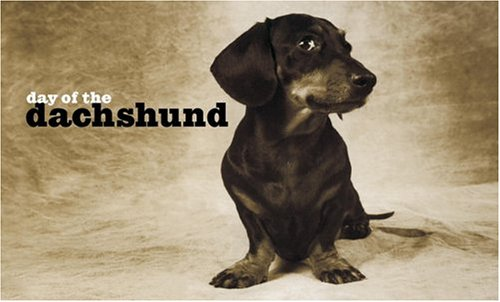 9781400053834: Day of the Dachshund Note Cards (Potter Style)