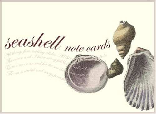 9781400053919: Seashell Small Note Cards (Potter Style)